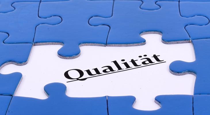 Qualitätsentwicklung und -sicherung in der betrieblichen Berufsausbildung